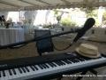 marco bertani dj mb musica (24)-001
